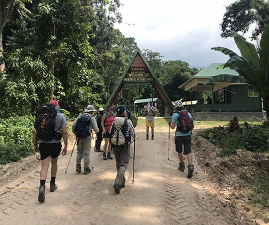 Nature Walk & Gorilla trekking