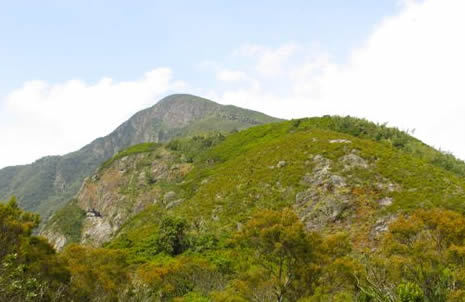Gorilla Trekking & Kahuzi Hike