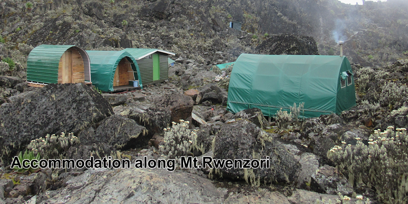Accommodation @Mt. Rwenzori Uganda