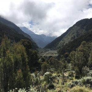 Vallies of Rwenzori Mountains